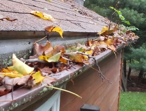 Berkshire, Franklin, Hampden, & Hampshire Counties clogged gutters